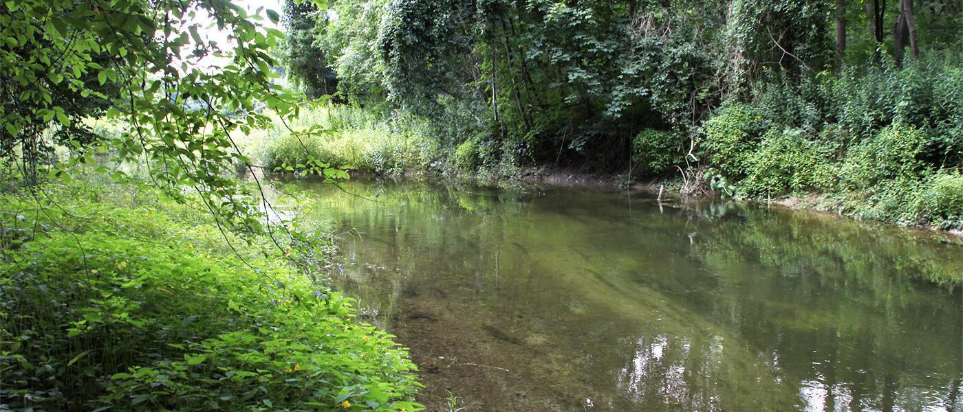 Natürliche Fließgewässer