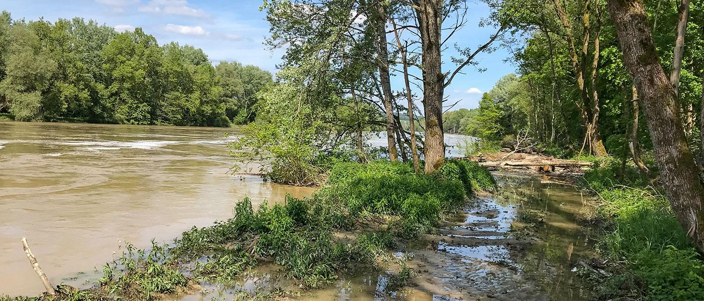 Das Wasser tritt über die Ufer und es kommt zu Hochwasser