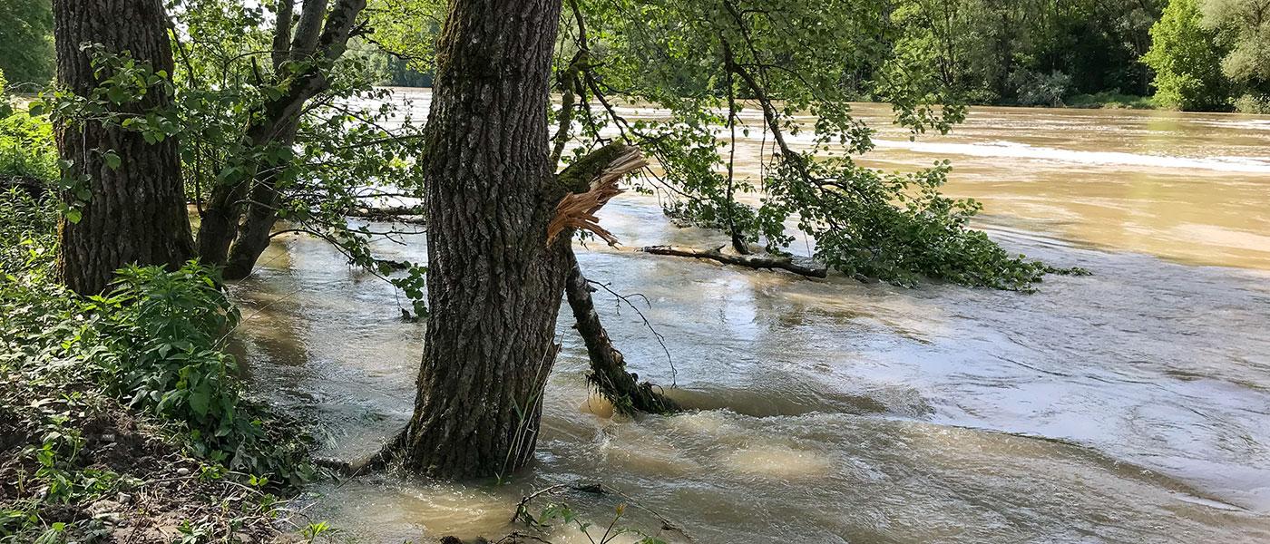 Strömung der Donau während dem Hochwasser